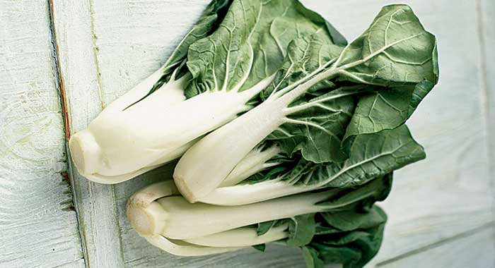 Chinese Cabbage Image